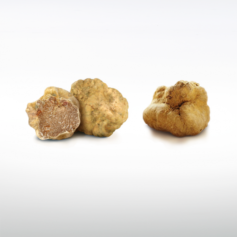 White Truffles Make Italy